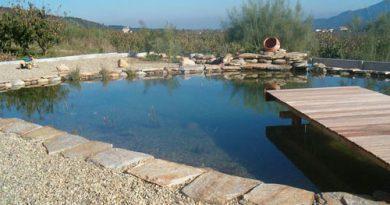 piscine naturel plage et margelle en pierre