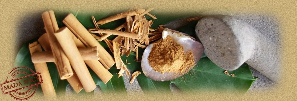 Cannelle Madagascar