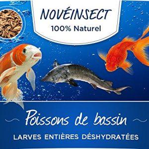 noveinsect Alimentation complémentaire pour poissons de bassin larges entières déshydratées